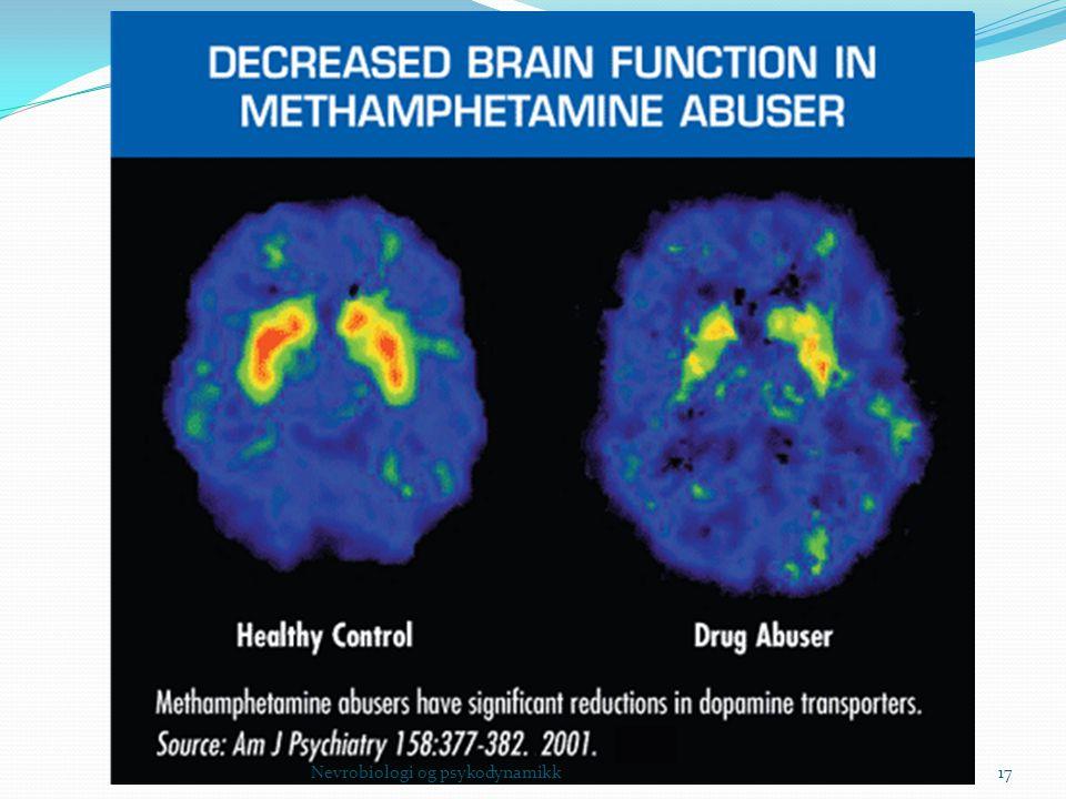 Nevrobiologi og psykodynamikk