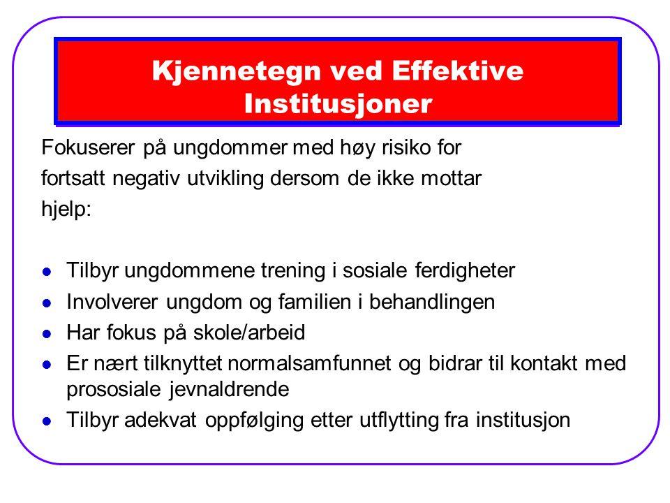 Kjennetegn ved Effektive Institusjoner