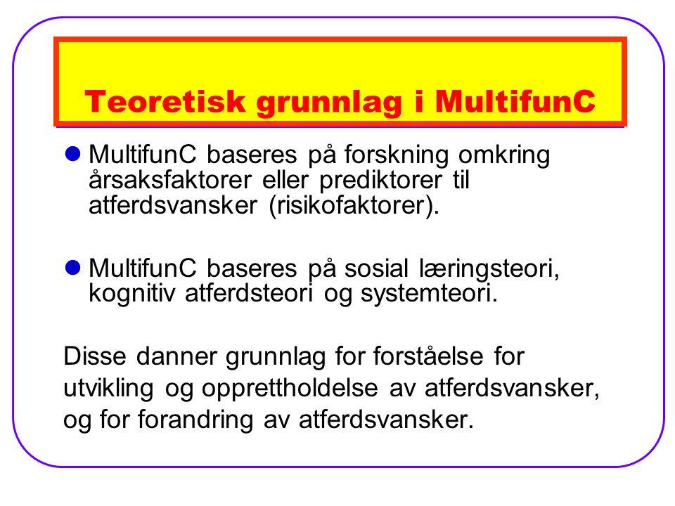 Teoretisk grunnlag i MultifunC