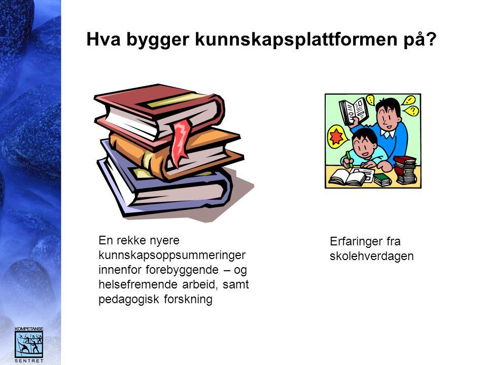 Hva bygger kunnskapsplattformen på