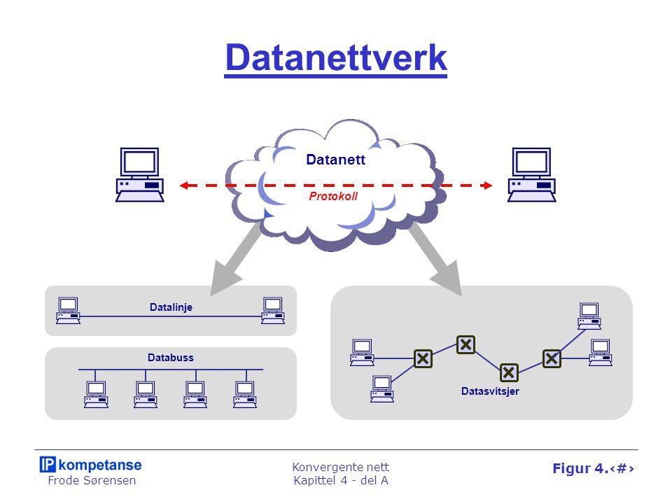 Datanettverk Datanett Protokoll Datalinje Databuss Datasvitsjer