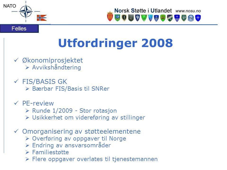 Utfordringer 2008 Økonomiprosjektet FIS/BASIS GK PE-review