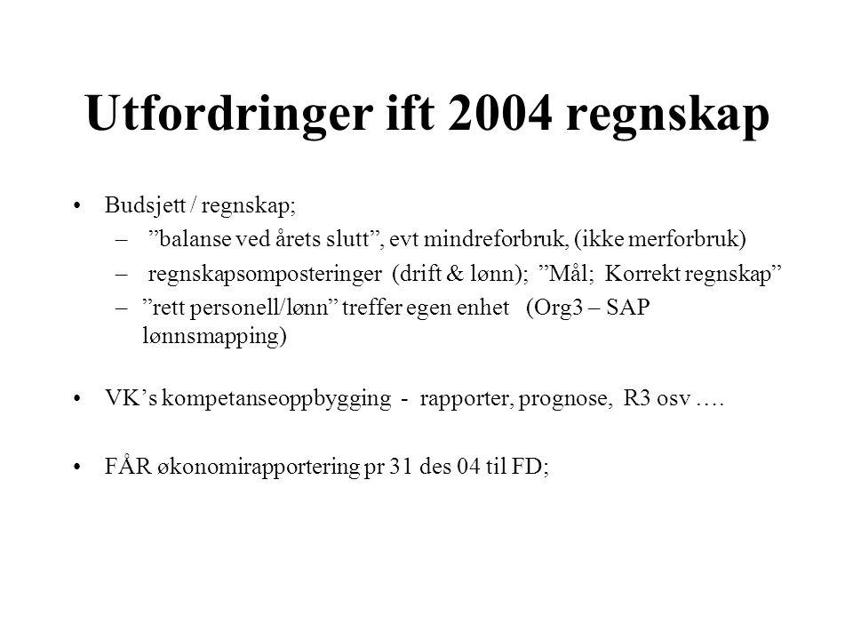 Utfordringer ift 2004 regnskap