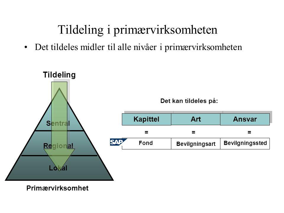 Tildeling i primærvirksomheten