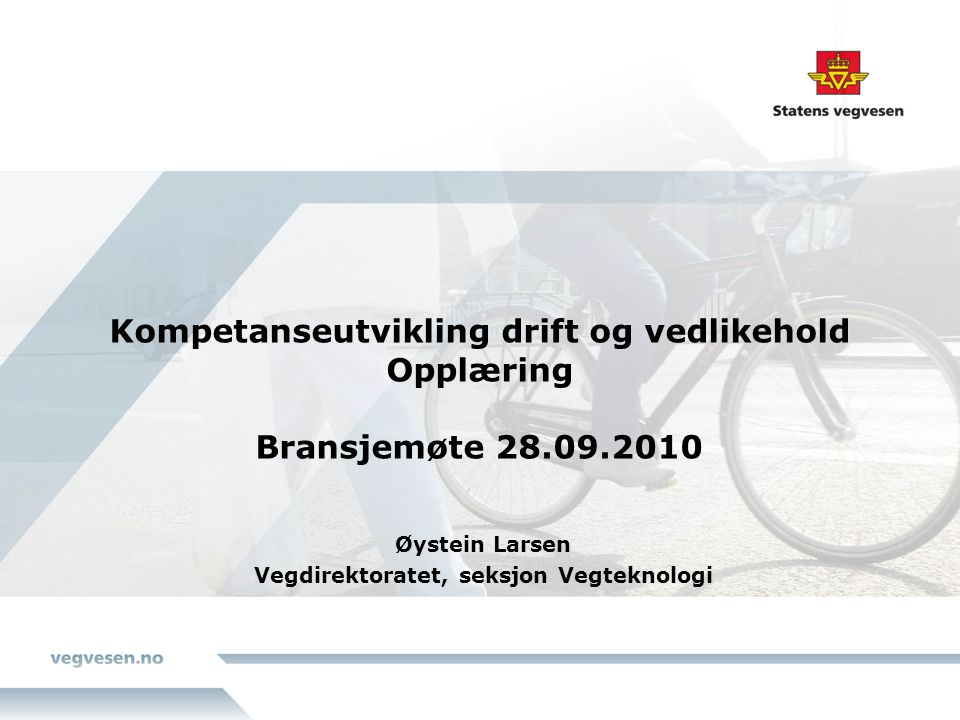 Øystein Larsen Vegdirektoratet, seksjon Vegteknologi