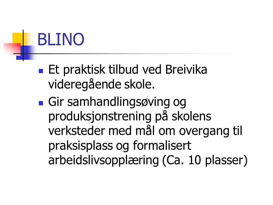 BLINO Et praktisk tilbud ved Breivika videregående skole.