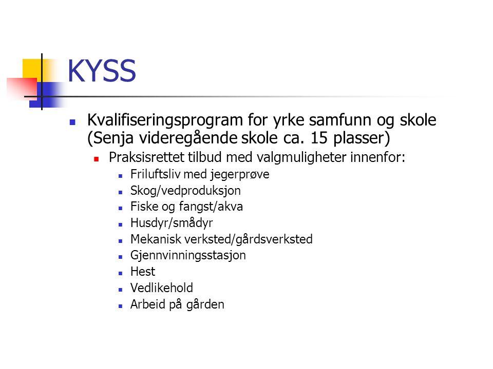 KYSS Kvalifiseringsprogram for yrke samfunn og skole (Senja videregående skole ca. 15 plasser) Praksisrettet tilbud med valgmuligheter innenfor: