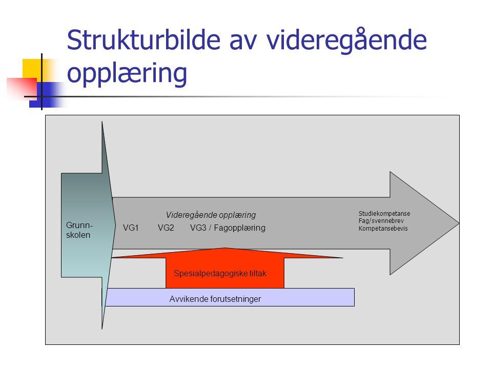 Strukturbilde av videregående opplæring