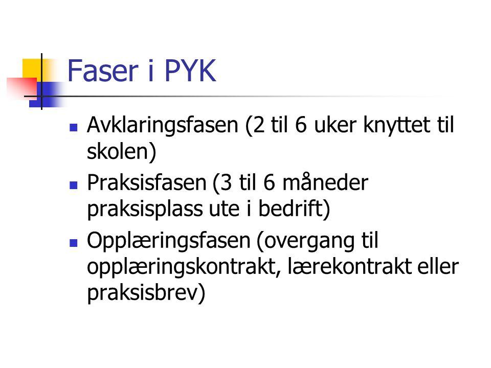 Faser i PYK Avklaringsfasen (2 til 6 uker knyttet til skolen)