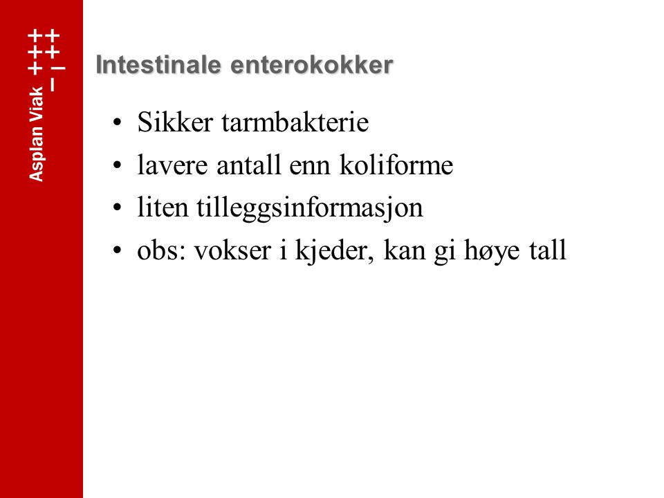 Intestinale enterokokker