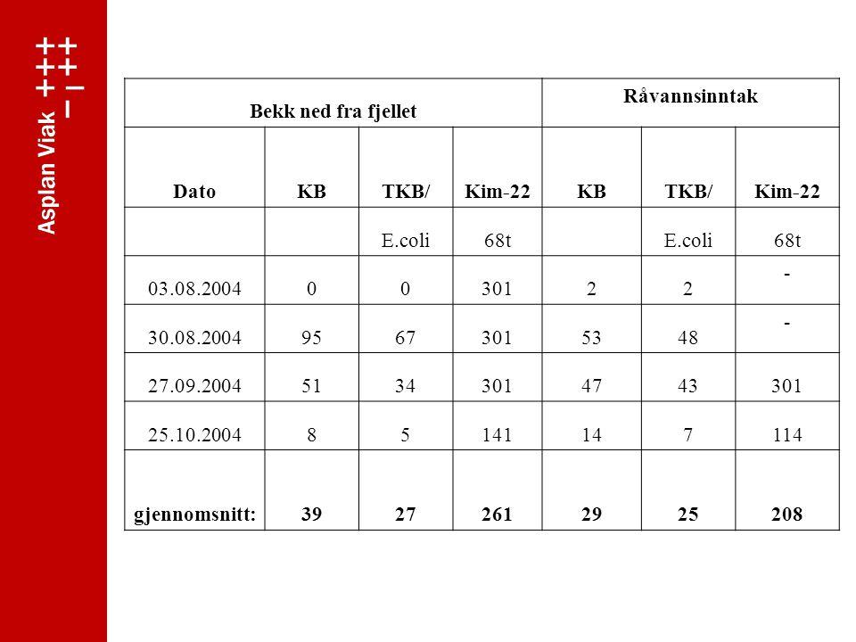 Bekk ned fra fjellet Råvannsinntak. Dato. KB. TKB/ Kim-22. E.coli. 68t. 03.08.2004. 301.