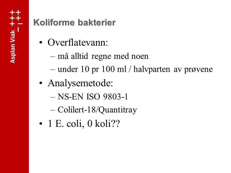 Overflatevann: Analysemetode: 1 E. coli, 0 koli Koliforme bakterier