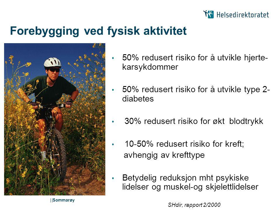 Forebygging ved fysisk aktivitet
