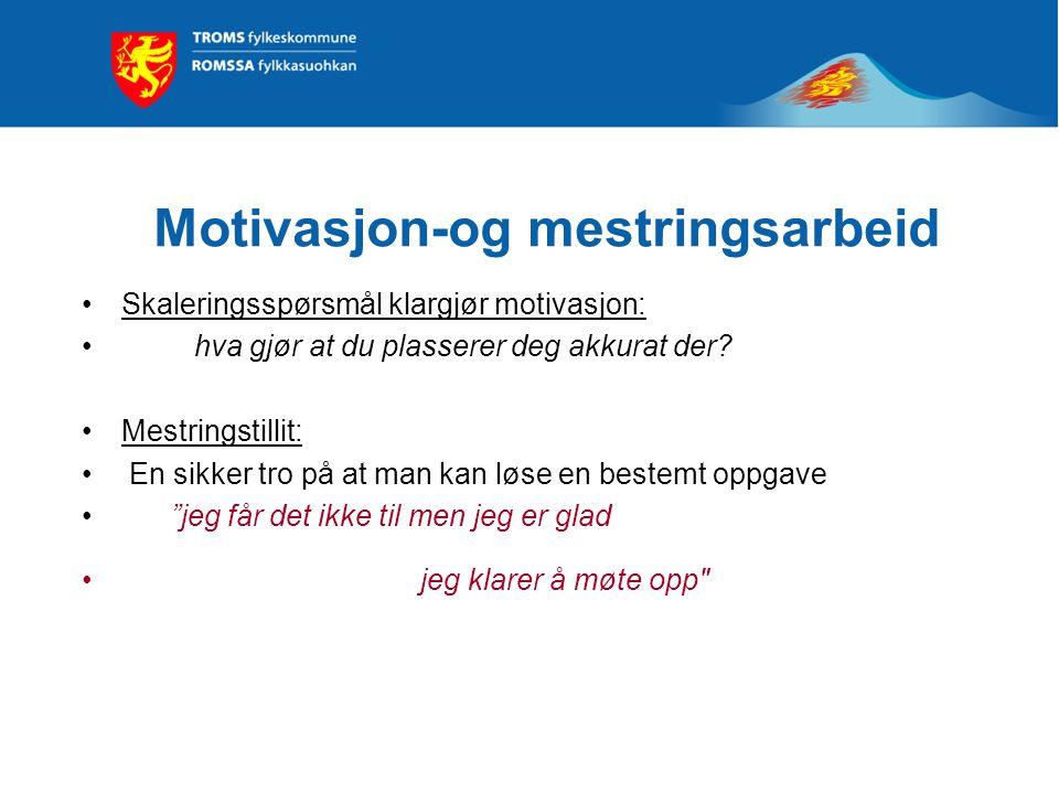 Motivasjon-og mestringsarbeid