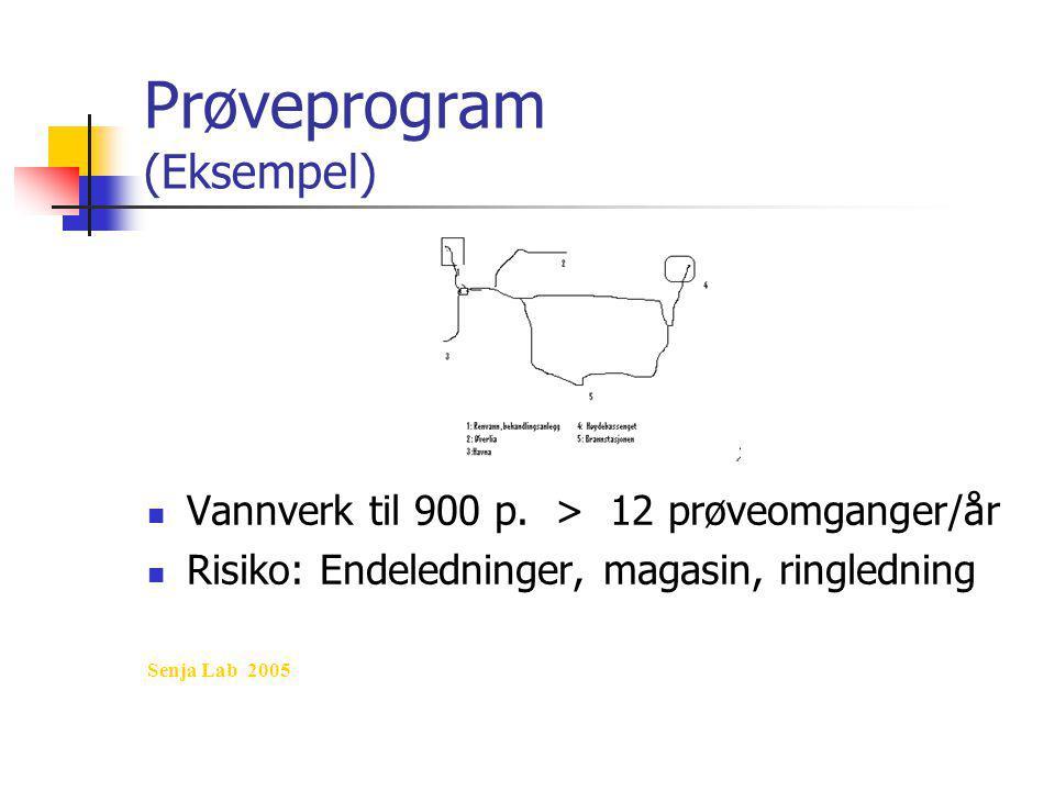 Prøveprogram (Eksempel)