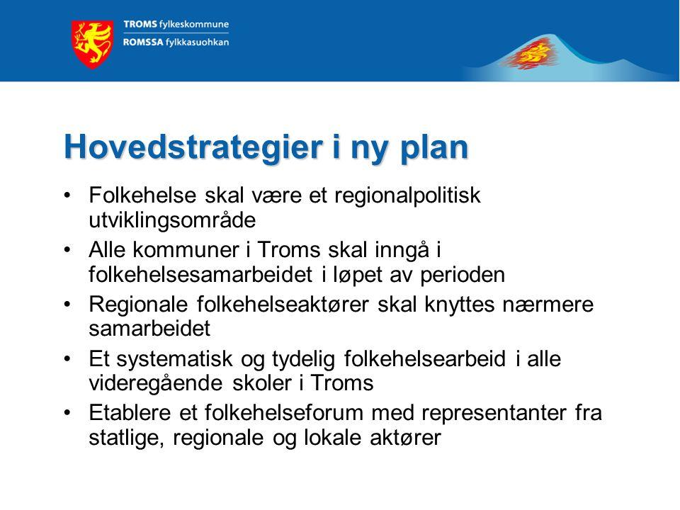 Hovedstrategier i ny plan