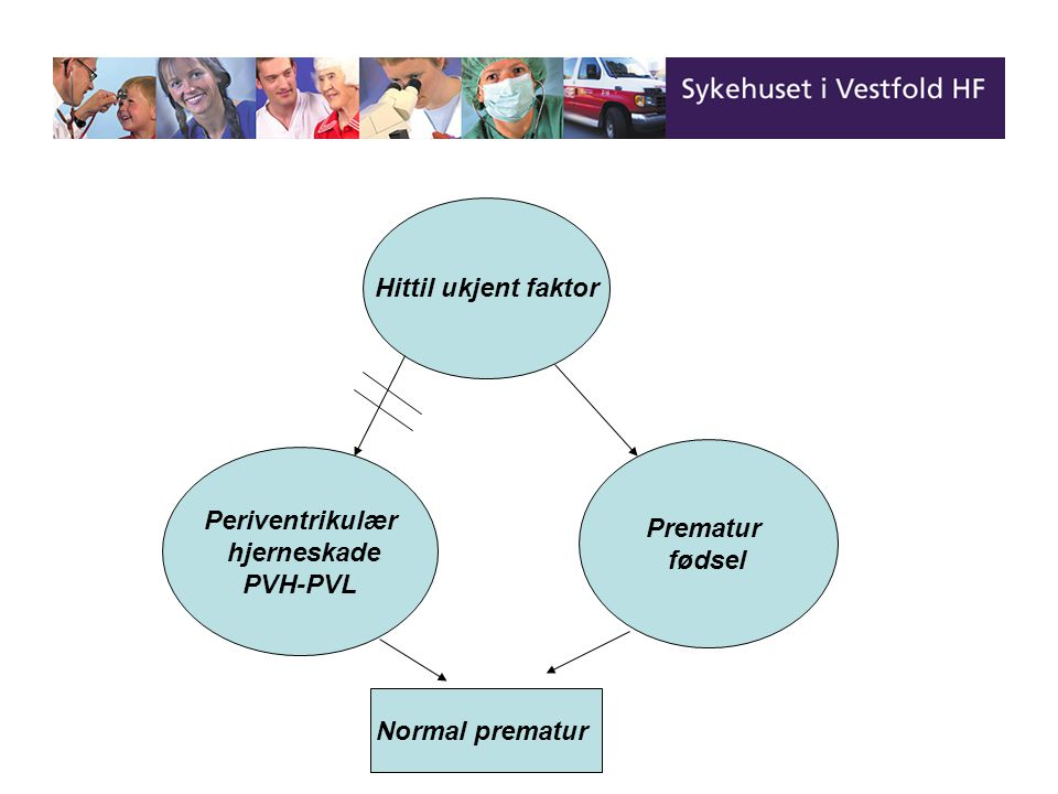 Hittil ukjent faktor Prematur fødsel Periventrikulær hjerneskade PVH-PVL Normal prematur