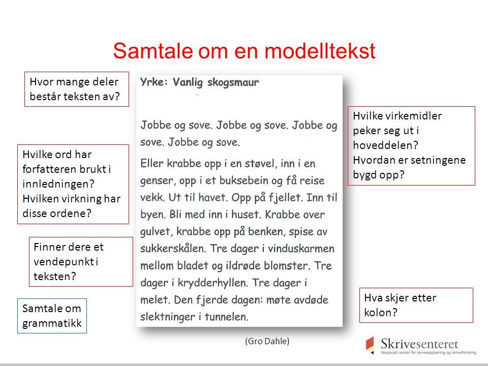 Samtale om en modelltekst