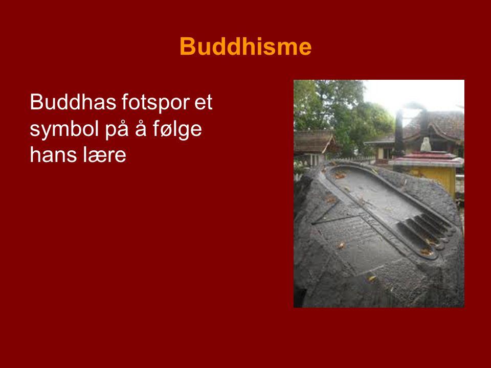 Buddhisme Buddhas fotspor et symbol på å følge hans lære