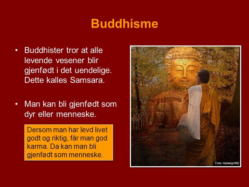 Buddhisme Buddhister tror at alle levende vesener blir gjenfødt i det uendelige. Dette kalles Samsara.