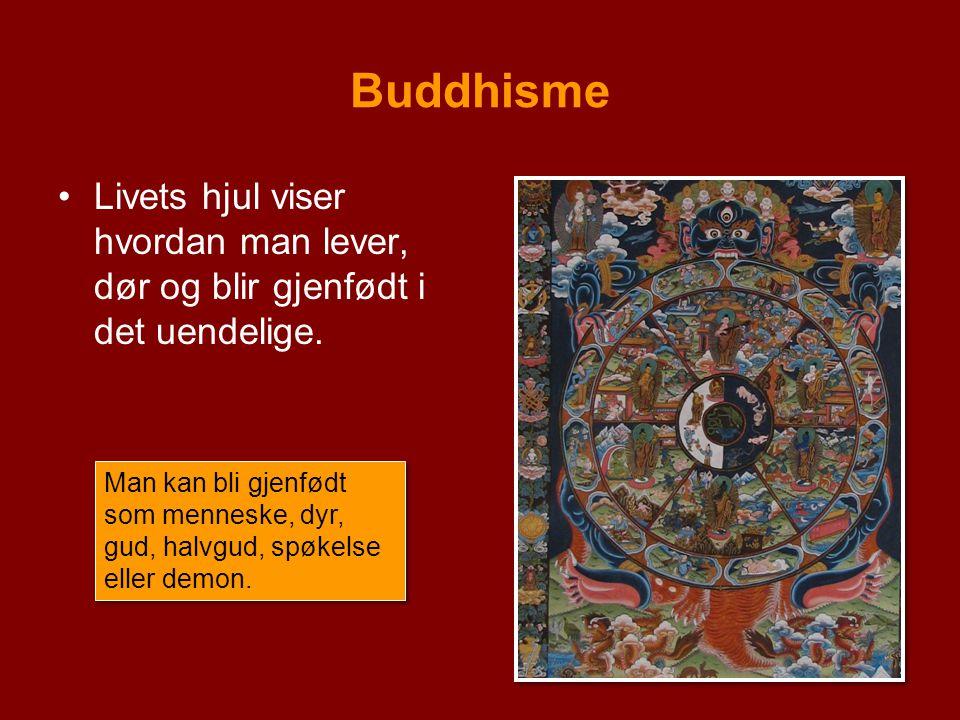 Buddhisme Livets hjul viser hvordan man lever, dør og blir gjenfødt i det uendelige.