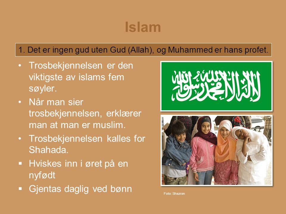 Islam Trosbekjennelsen er den viktigste av islams fem søyler.