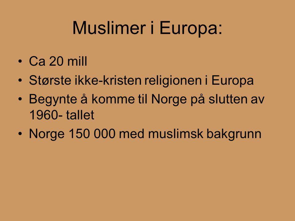 Muslimer i Europa: Ca 20 mill Største ikke-kristen religionen i Europa