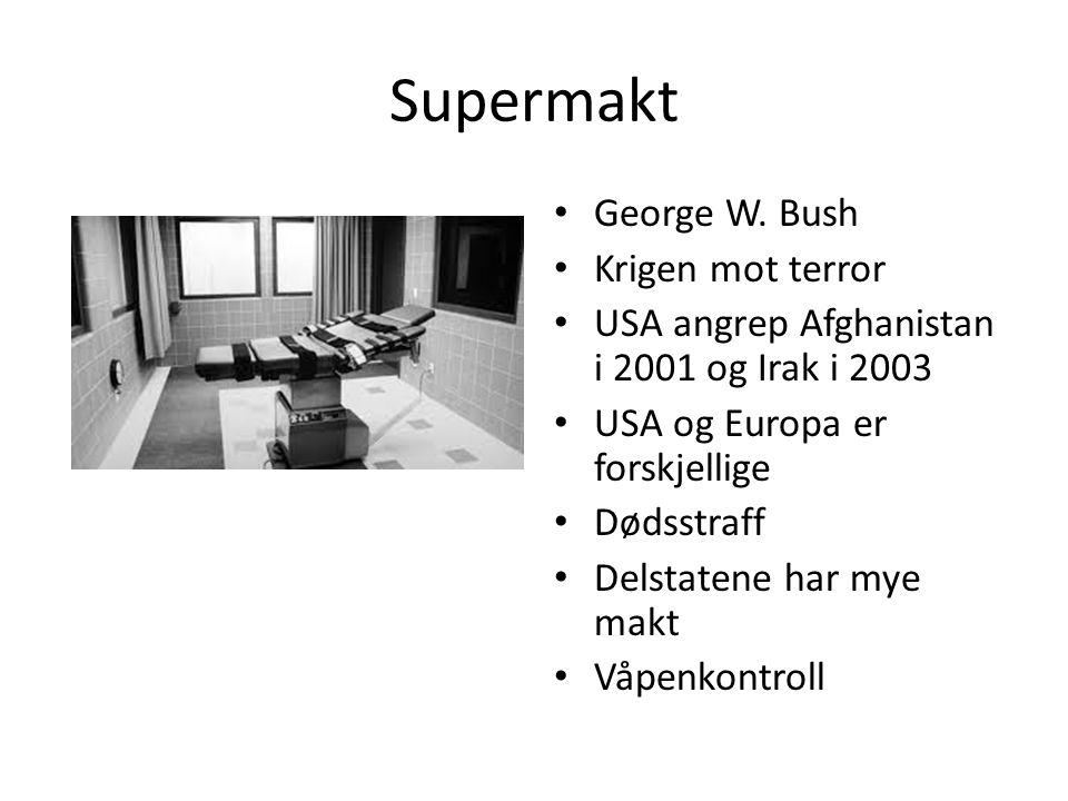 Supermakt George W. Bush Krigen mot terror