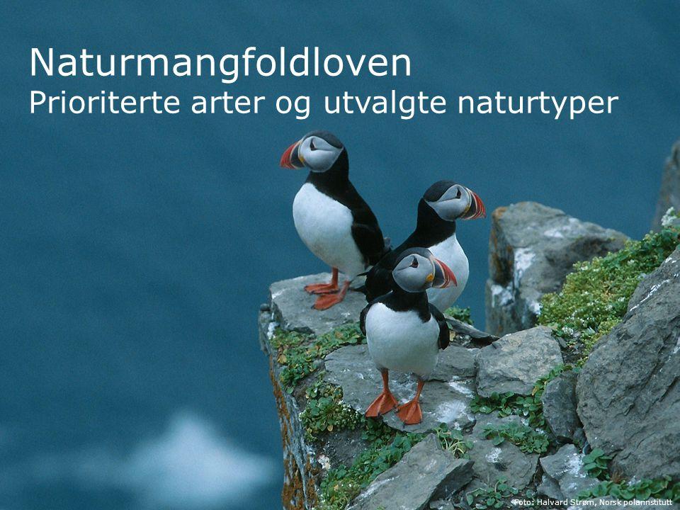Naturmangfoldloven Prioriterte arter og utvalgte naturtyper 1