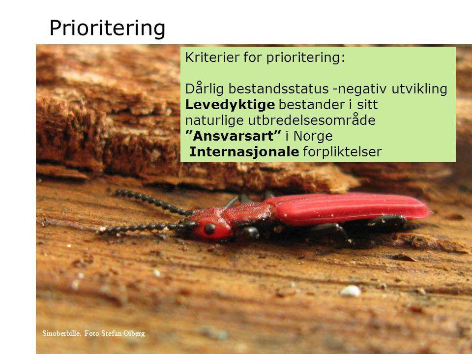 Prioritering Kriterier for prioritering: