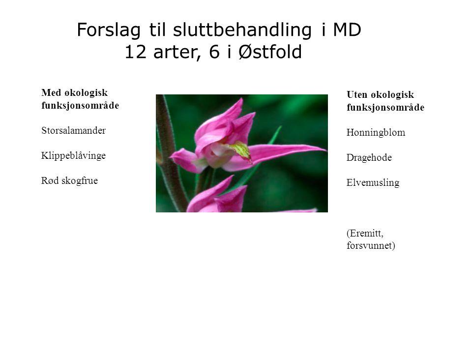 Forslag til sluttbehandling i MD 12 arter, 6 i Østfold
