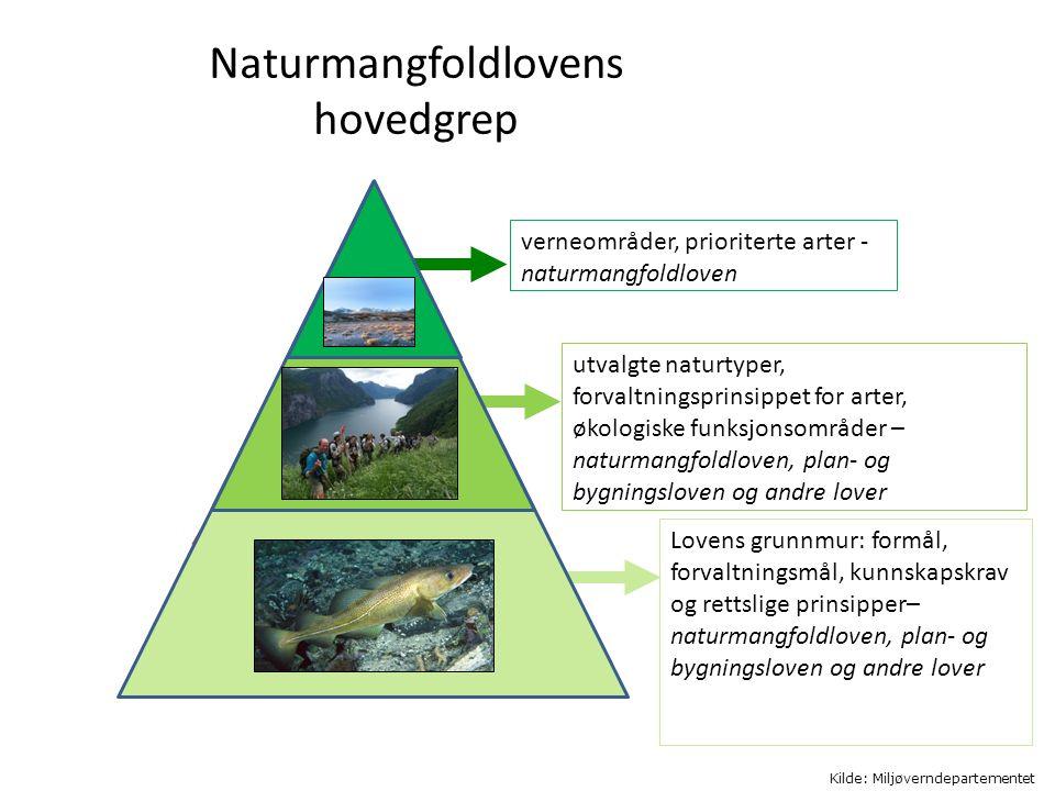 Naturmangfoldlovens hovedgrep