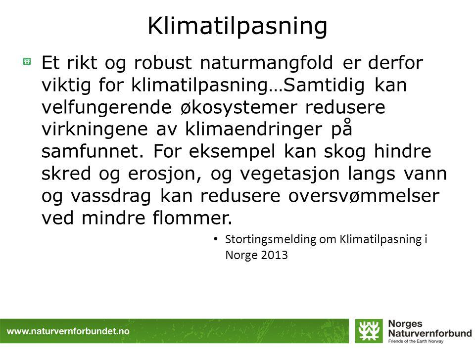 Klimatilpasning