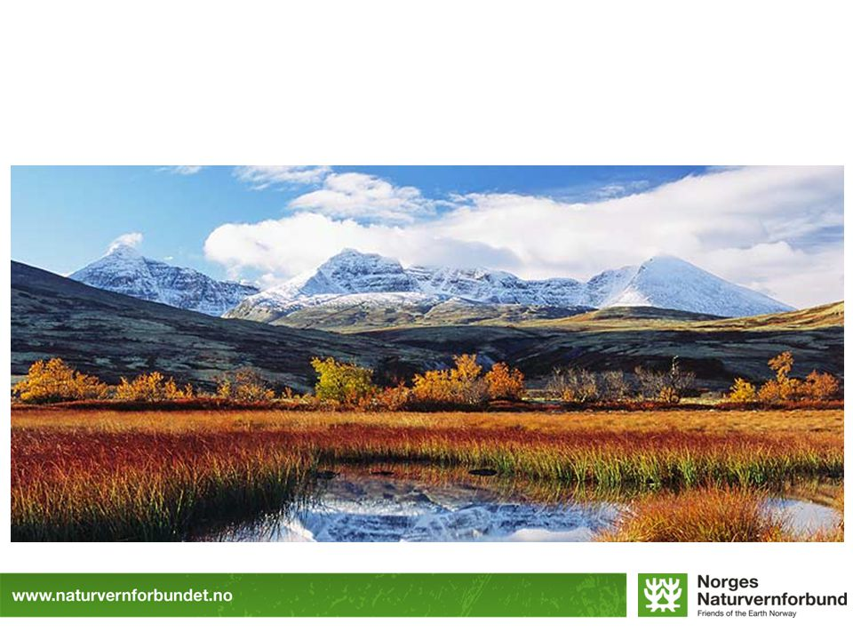 1921 fremmet vi forslag om nasjonalpark i Jotunheimen, jobbet nå mer med vern av større områder.