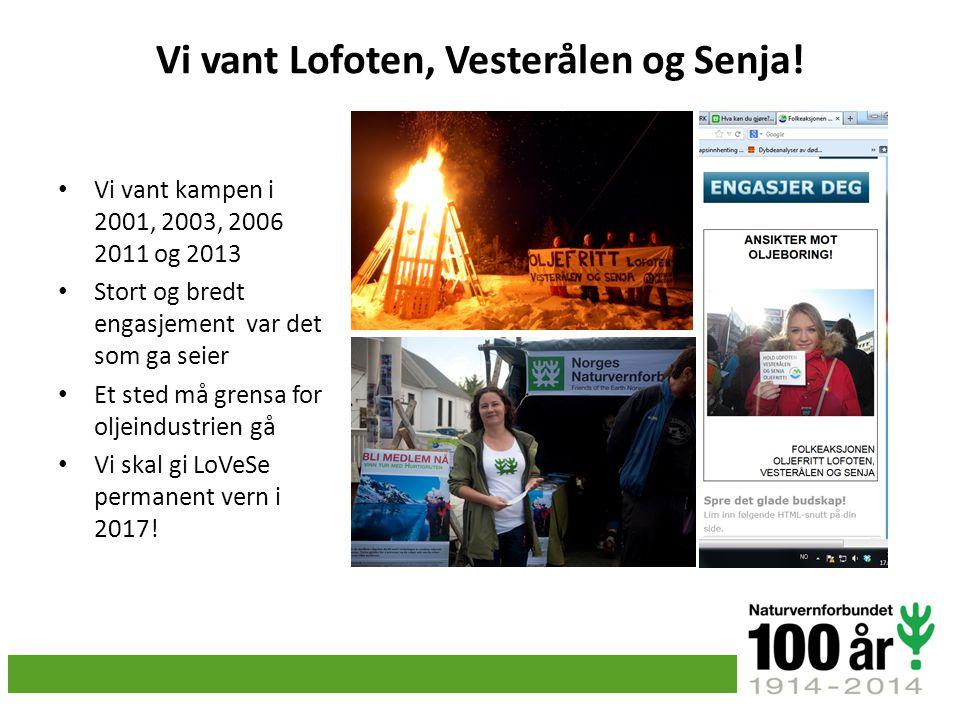 Vi vant Lofoten, Vesterålen og Senja!