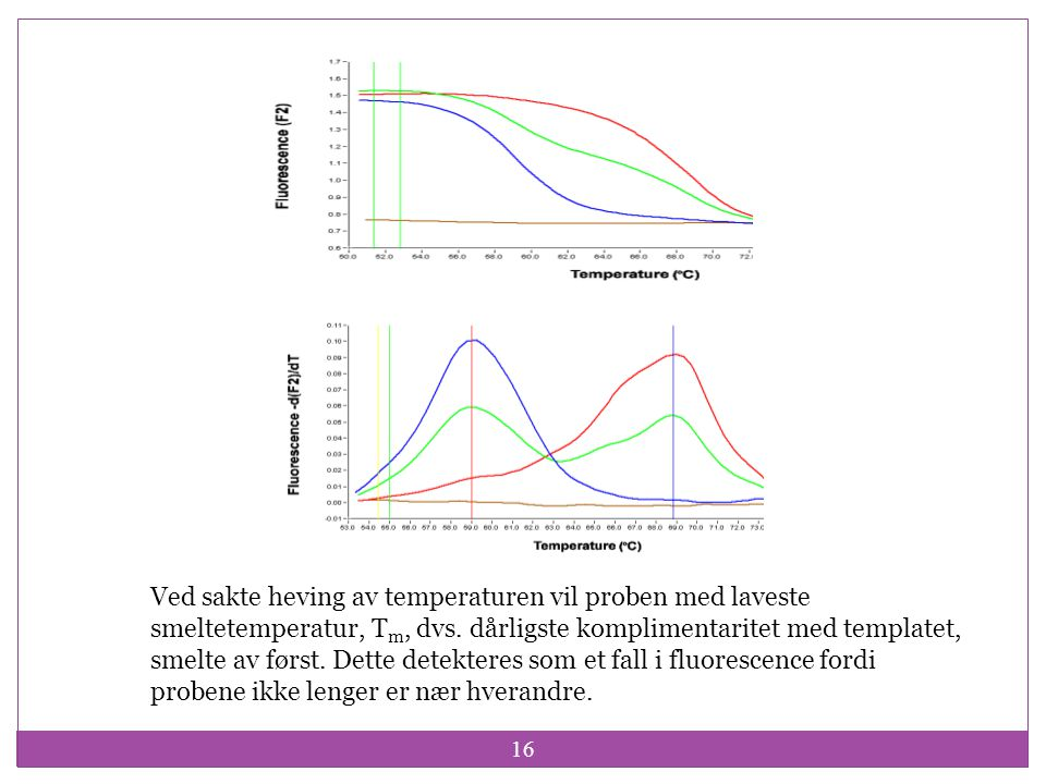 Ved sakte heving av temperaturen vil proben med laveste smeltetemperatur, Tm, dvs.