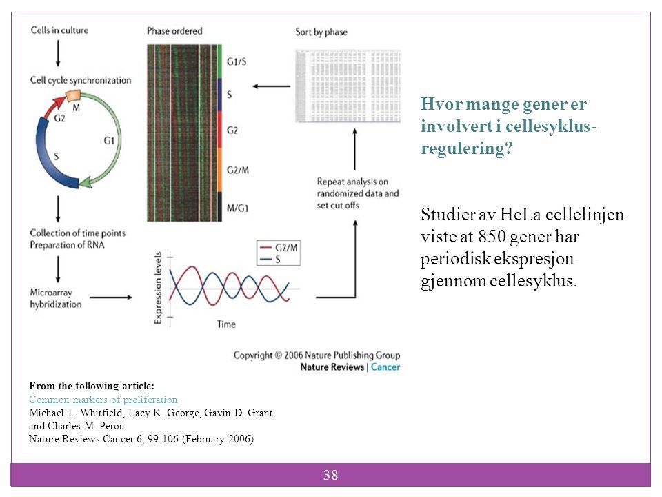 Hvor mange gener er involvert i cellesyklus- regulering