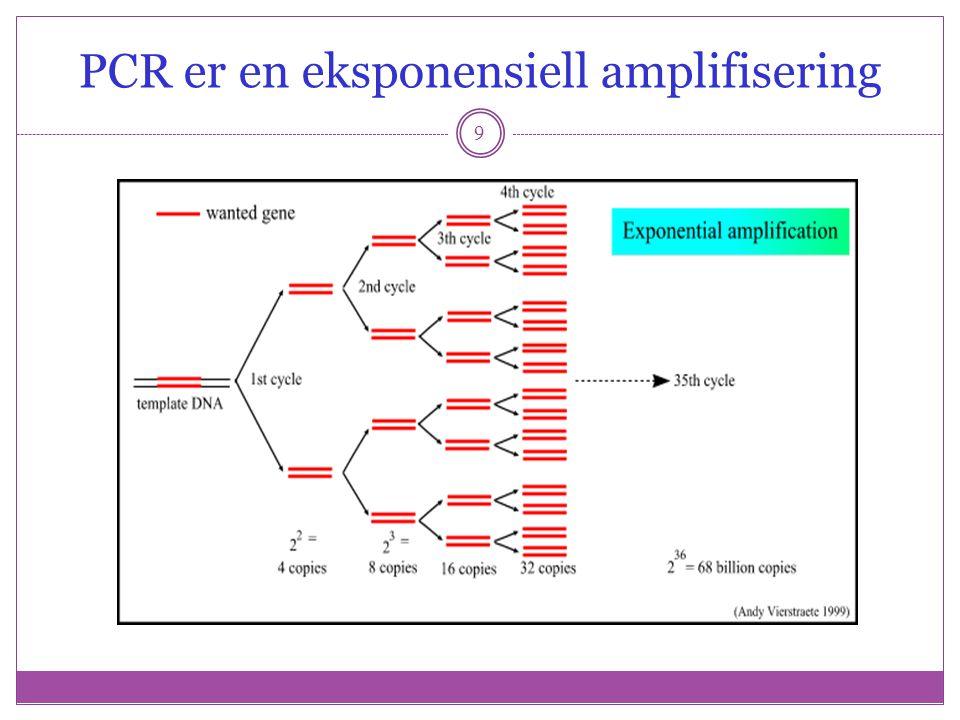 PCR er en eksponensiell amplifisering