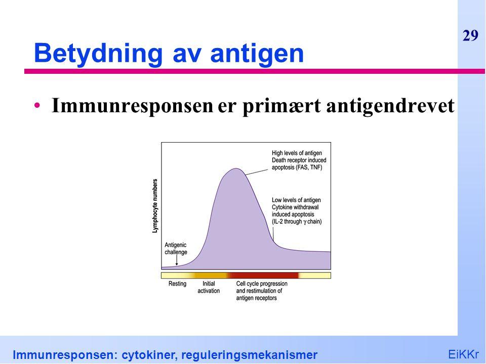 Betydning av antigen Immunresponsen er primært antigendrevet
