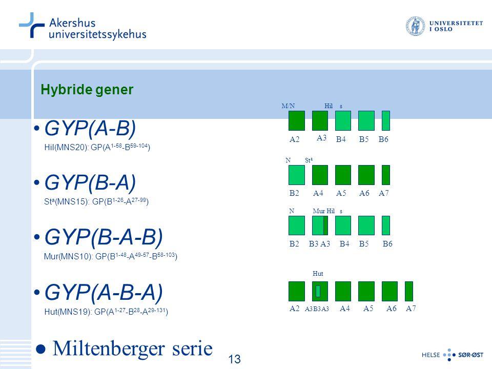 GYP(B-A-B) GYP(A-B-A) ● Miltenberger serie GYP(A-B) GYP(B-A)