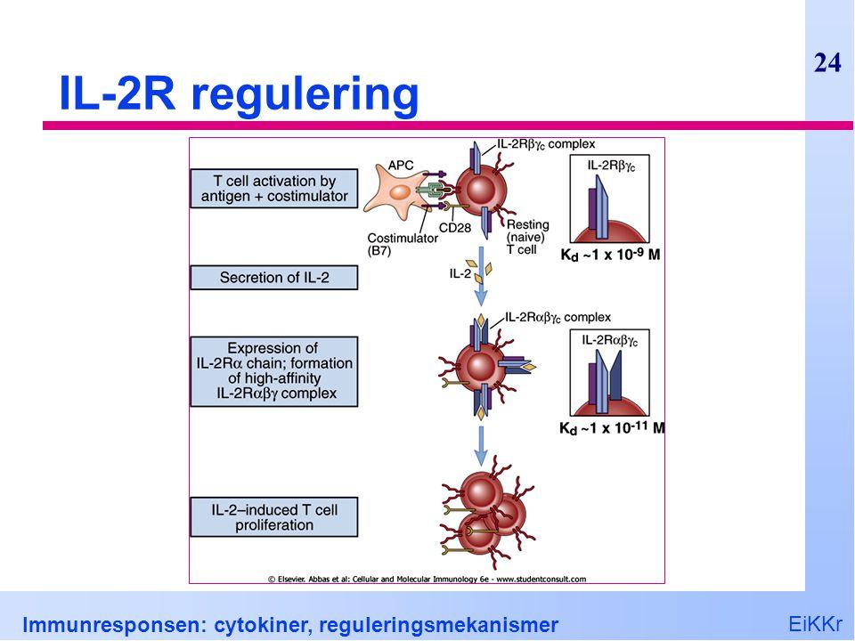 IL-2R regulering