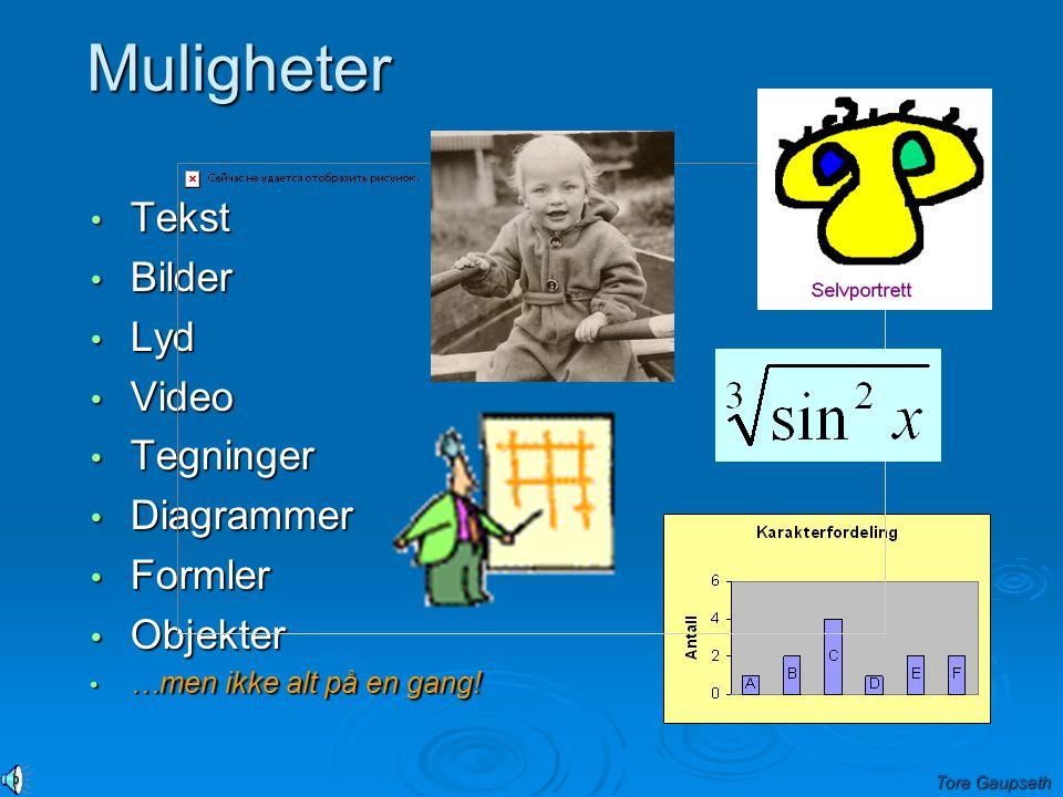 Muligheter Tekst Bilder Lyd Video Tegninger Diagrammer Formler