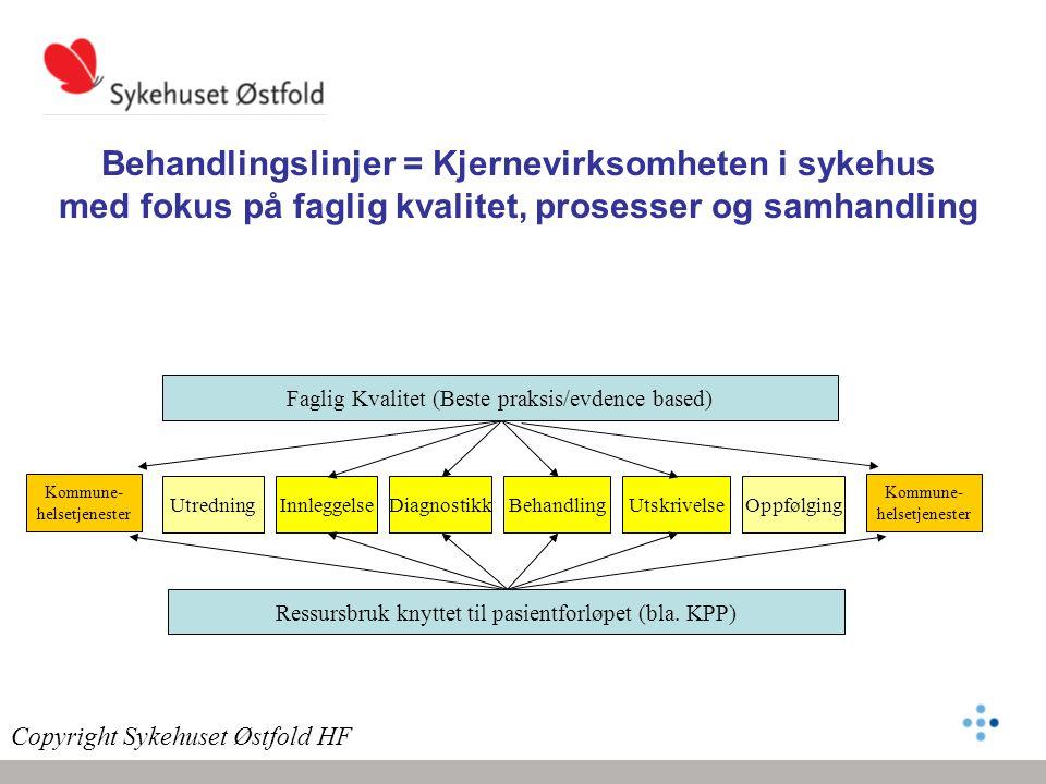 Behandlingslinjer = Kjernevirksomheten i sykehus med fokus på faglig kvalitet, prosesser og samhandling
