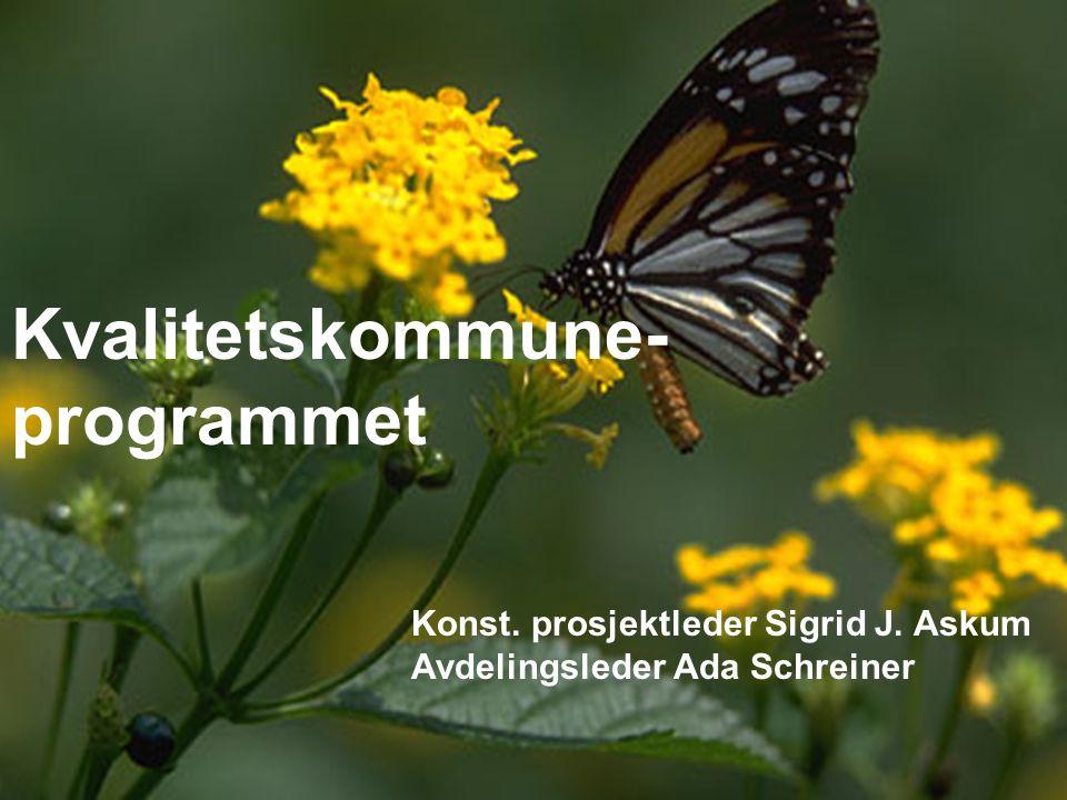 Kvalitetskommune- programmet Konst. prosjektleder Sigrid J. Askum