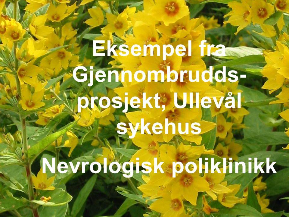 Eksempel fra Gjennombrudds-prosjekt, Ullevål sykehus
