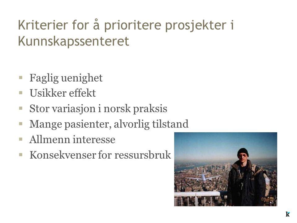 Kriterier for å prioritere prosjekter i Kunnskapssenteret