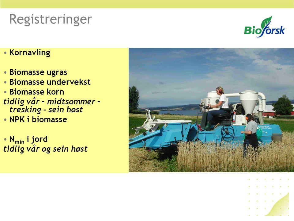 Registreringer Kornavling Biomasse ugras Biomasse undervekst