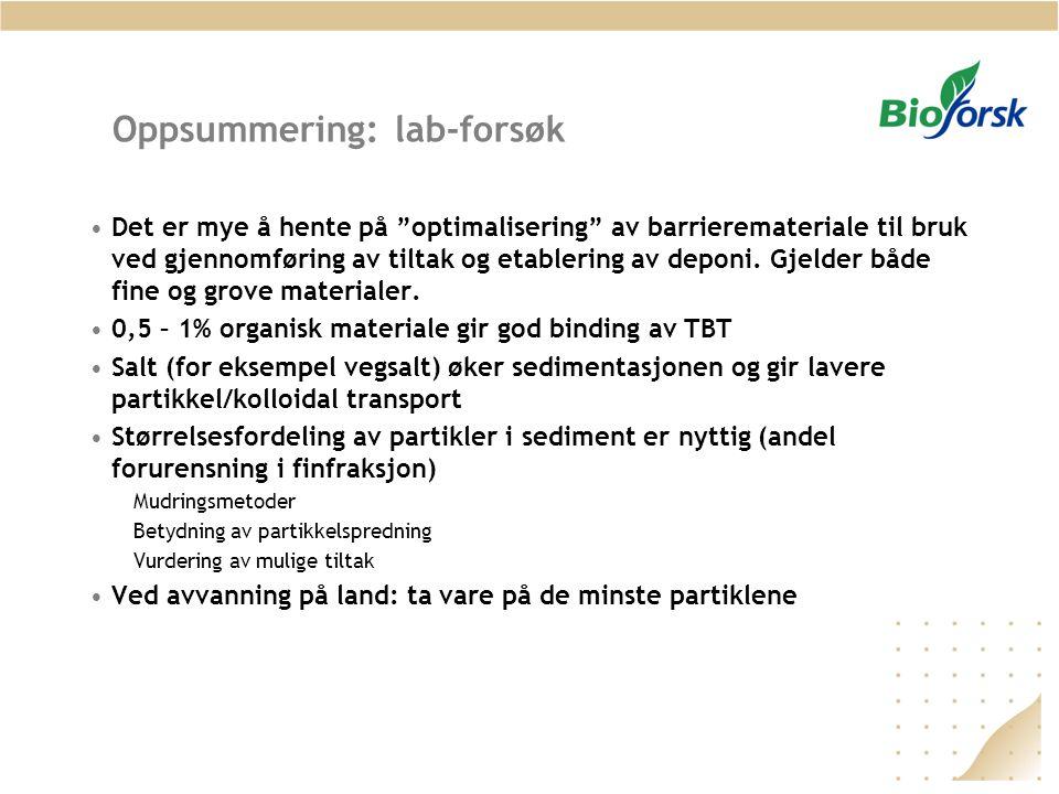 Oppsummering: lab-forsøk