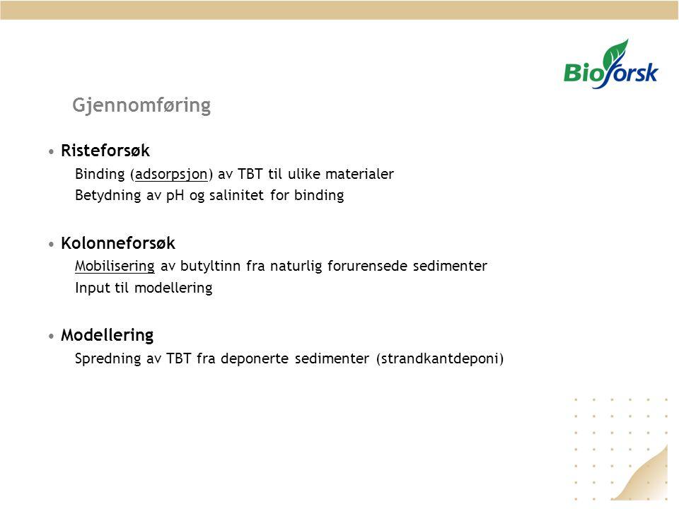 Gjennomføring Risteforsøk Kolonneforsøk Modellering