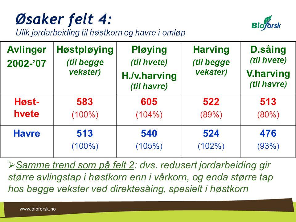 Øsaker felt 4: Ulik jordarbeiding til høstkorn og havre i omløp